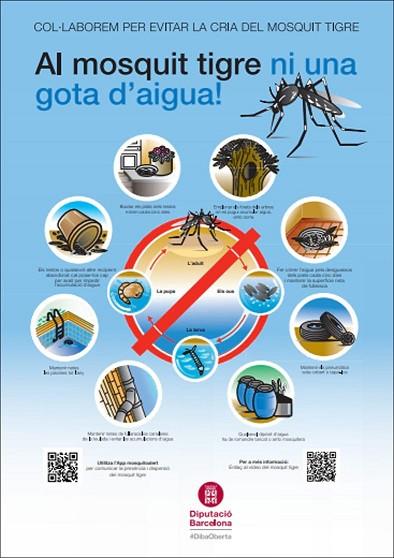 Cartel informativo diputacio barcelona mosquito tigre